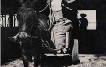 יוסף עגלה וחמור.png