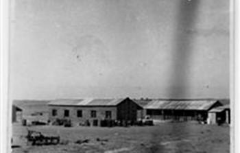 נירים בדנגור 1946.jpg