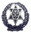 סמל השומר הצעיר.jpg
